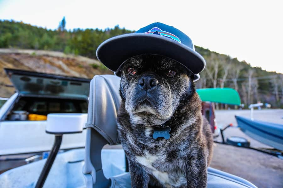 Montana Fly Fishing Hats