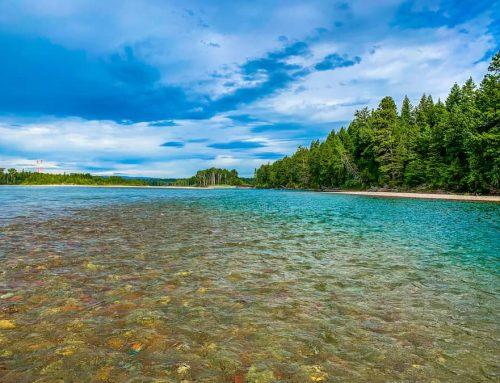 Fishing in Montana in July
