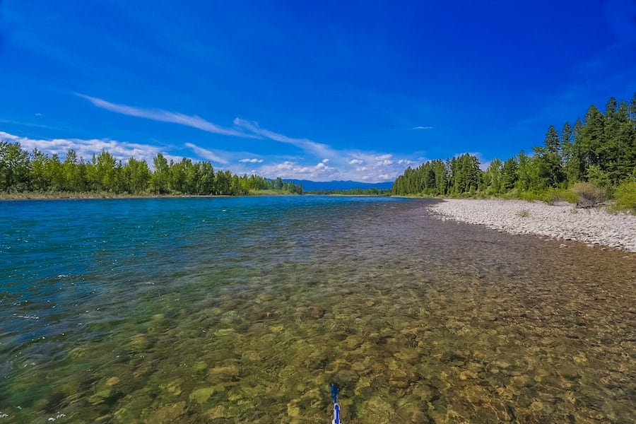 Fly Fishing Montana in June
