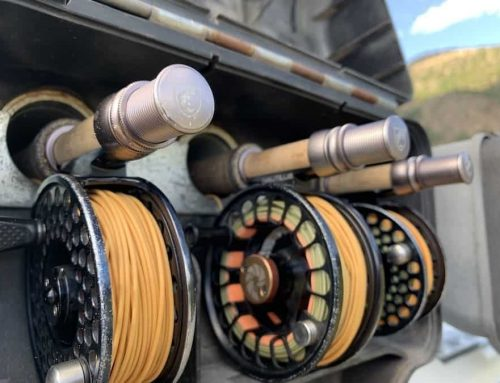 Best Fly Rod for Montana
