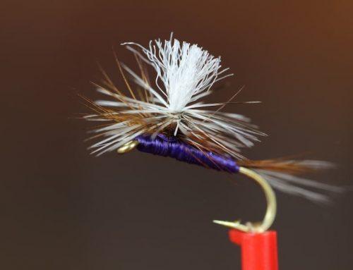 Tying A Purple Haze Dry Fly