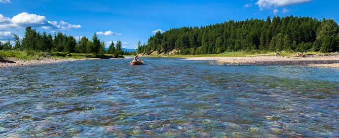 Best Trout Rivers in Montana