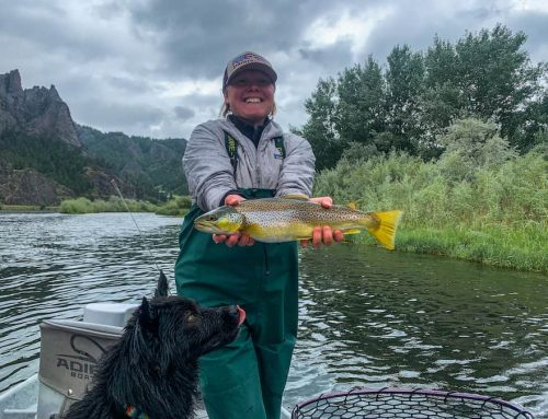 June 17 Fishing Report