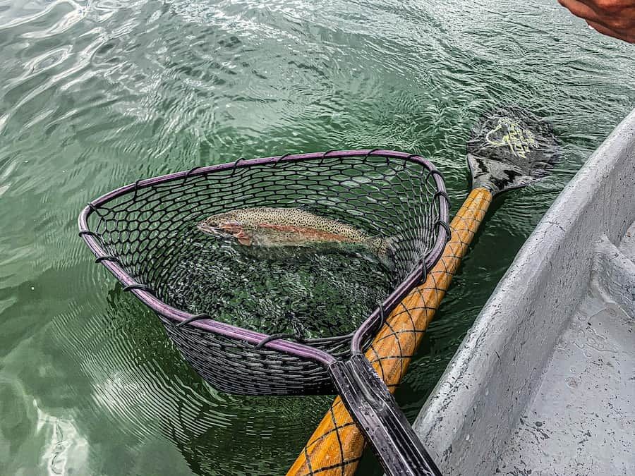 July 15 Fishing Report