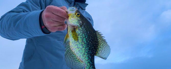Ice Fishing Report, February 7